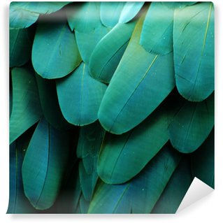 Papier Peint Vinyle Ara Plumes (Turquoise)