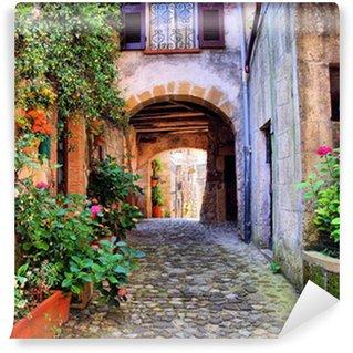 Papier Peint Vinyle Arqué rue pavée dans un village de Toscane, Italie