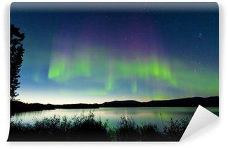 Papier Peint Vinyle Aurores boréales nuit d'été sur le lac Laberge