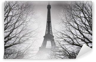 Papier Peint Vinyle Automne à paris - photo noir et blanc. image mystérieuse.