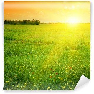 Papier Peint Vinyle Beau coucher du soleil