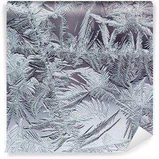 Papier Peint Vinyle Beau motif givré d'hiver en cristaux transparents fragiles sur le verre