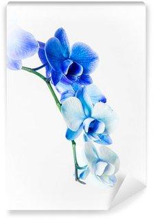 Papier Peint Vinyle Blue orchid
