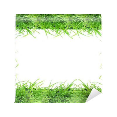 papier peint cadre verdure pixers nous vivons pour changer. Black Bedroom Furniture Sets. Home Design Ideas