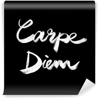 Papier Peint Vinyle Carpe Diem. Citation manuscrite