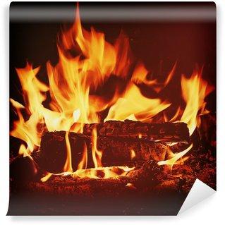 Papier Peint Vinyle Cheminée avec bois de bouleau et de la flamme.