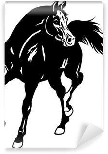 Papier Peint Vinyle Cheval arabe blanc noir