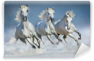 Papier Peint Vinyle Chevaux blancs galopant dans la neige