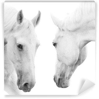 Papier Peint Vinyle Chevaux blancs