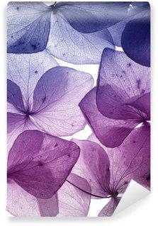 Papier Peint Vinyle Coloré pétale de fleur gros plan