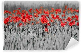 Papier Peint Vinyle Coquelicots rouges noir blanc