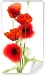 Papier Peint Vinyle Coquelicots sur fond blanc - rouge pavot, décor floral