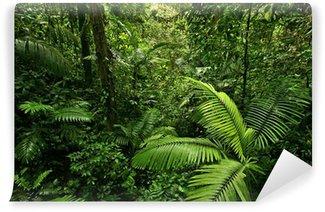 Papier Peint Vinyle Dense Tropical Rain Forest
