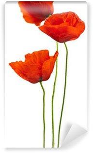 Papier Peint Vinyle Design floral - coquelicots isolées sur fond blanc