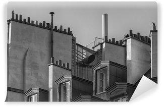 Papier Peint Vinyle Détail de toits traditionnels à Paris. Noir et blanc