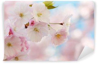 Papier Peint Vinyle Direction générale de cerisier japonais à la fleur d'