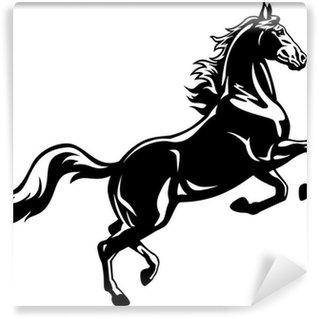 Papier Peint Vinyle Élevage cheval blanc noir
