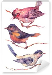 Papier Peint Vinyle Ensemble d'aquarelles colorées oiseaux isolé sur blanc