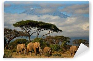 Papier Peint Vinyle Famille d'éléphants en face du mont. Kilimandjaro