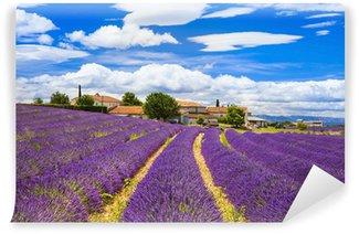Papier Peint Vinyle Feelds de fleurs de lavande, Valensole, Provence, France, Europe