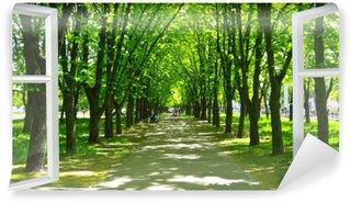 Papier Peint Vinyle Fenêtre ouverte au beau parc avec beaucoup d'arbres verts