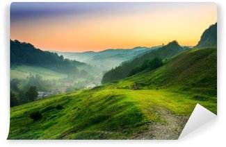 Papier Peint Vinyle Flanc de colline dans le brouillard matinal