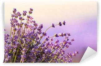 Papier Peint Vinyle Fleurs de lavande fleurissent l'heure d'été