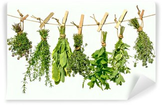 Papier Peint Vinyle Herbes