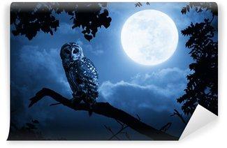 Papier Peint Vinyle Hibou éclairé par la pleine lune la nuit d'Halloween