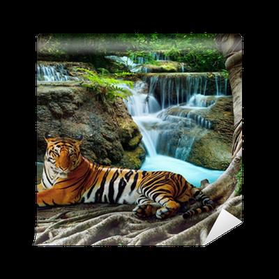 papier peint indochine tigre couch avec d tente sous banyantree contre bea pixers nous. Black Bedroom Furniture Sets. Home Design Ideas