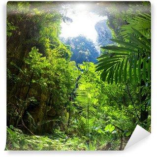 Papier Peint Vinyle Jungle forest