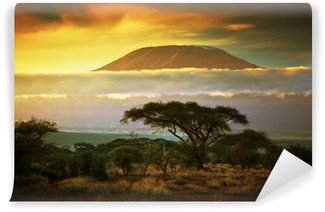 Papier Peint Vinyle Kilimandjaro. Savanna à Amboseli, au Kenya