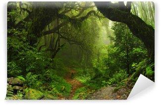 Papier Peint Lavable Forêt de la jungle népalaise