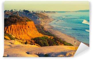 Papier Peint Lavable Plage d'Encinitas en Californie