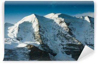 Papier Peint Vinyle Les Alpes suisses en hiver