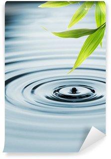 Papier Peint Vinyle Les feuilles fraîches de bambou sur l'eau