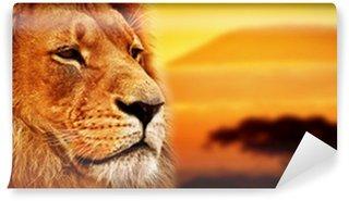 Papier Peint Vinyle Lion portrait sur la savane. Mont Kilimandjaro au coucher du soleil. Safari