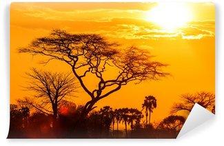 Papier Peint Vinyle Lueur orange d'un coucher de soleil africain