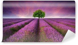 Papier Peint Vinyle Magnifique coucher de soleil d'été de lavande champ paysage avec un seul arbre