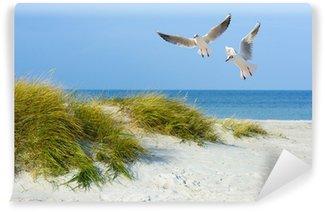 Papier Peint Vinyle Mouettes sur la plage de sable