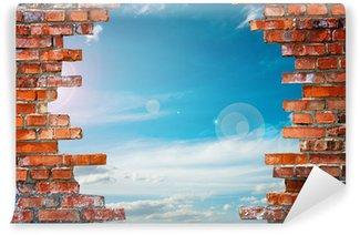Papier Peint Vinyle Mur de briques avec le trou