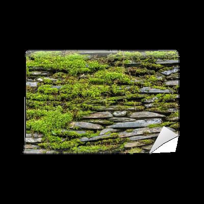 papier peint mur de pierre avec de la mousse verte pixers nous vivons pour changer. Black Bedroom Furniture Sets. Home Design Ideas