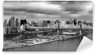 Papier Peint Vinyle New York Cityscape