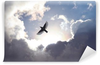 Papier Peint Vinyle Oiseau ange dans le ciel