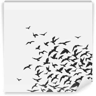 Papier Peint Vinyle _ oiseaux d'arrière-plan