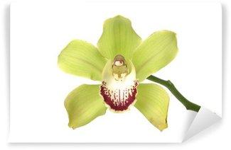 Papier Peint Vinyle Orchid green