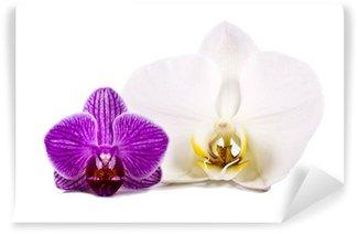 Papier Peint Vinyle Orchid isolé