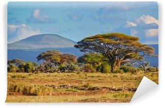 Papier Peint Vinyle Paysage de savane en Afrique, Amboseli, au Kenya