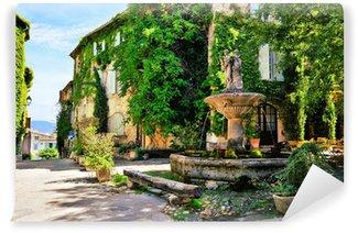 Papier Peint Vinyle Place de la ville feuillue avec fontaine dans un village pittoresque en Provence, France