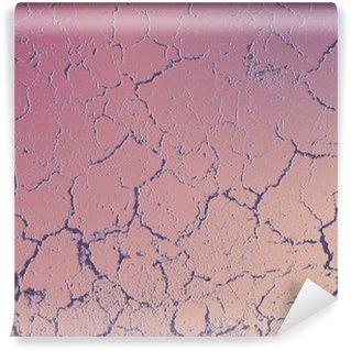 Papier Peint Vinyle Plaster02 grunge
